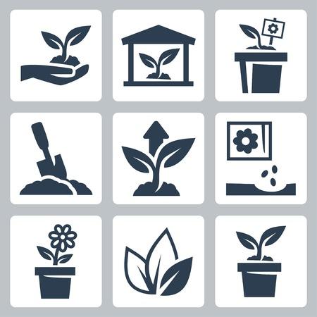 siembra: iconos de cultivo de plantas establecidos Vectores