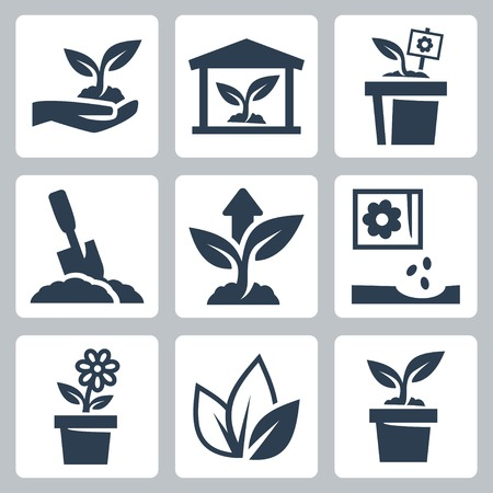 seed pots: plant growing icons set