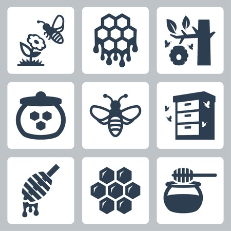 Honey related vector icons set Illustration