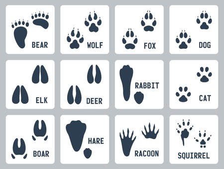 Animal tracks icons set