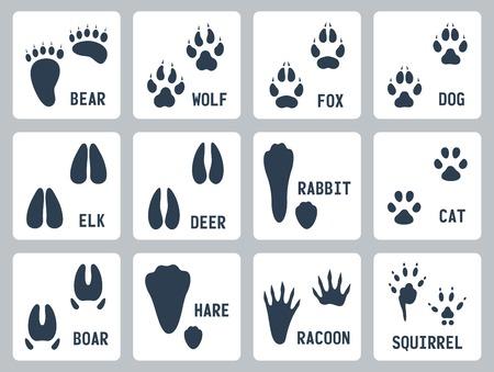 animal tracks: Tracce degli animali icone set Vettoriali