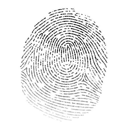 dactylogram: Vector realistic fingerprint