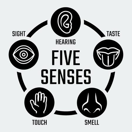 olfato: Cinco sentidos iconos conjunto de vectores