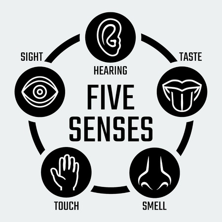 Five senses vector icons set