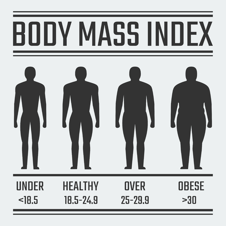 obeso: Índice de Masa Corporal ilustración vectorial Vectores