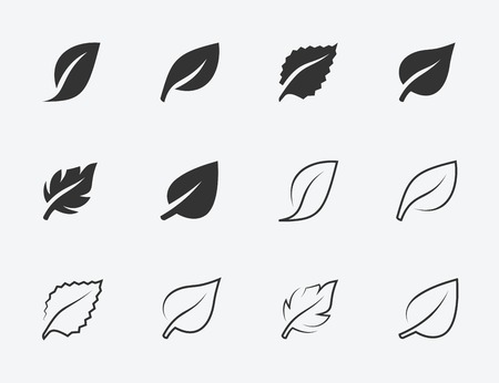 Leaves vector icons set, glyph and thin line style Illustration