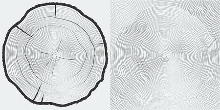 boom: Vector sawcut boomstam en boomringen achtergrond Stock Illustratie