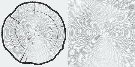 Vector sawcut tree trunk and tree-rings background