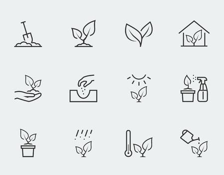 crecimiento planta: Planta de iconos de vectores relacionados ubicado en estilo de esquema Vectores