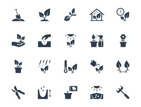 semilla: vector de la planta en crecimiento y el cultivo conjunto de iconos