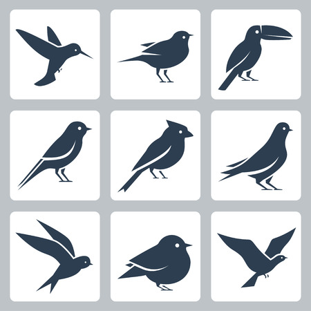 Birds vector icon set 免版税图像 - 58518807