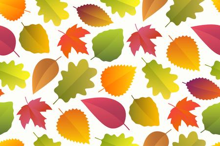 aspen leaf: Seamless pattern of autumn leaves