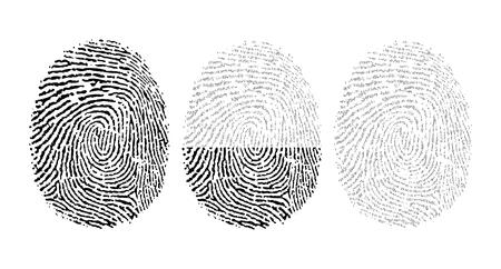 Vector fingerprint consisting of binary code
