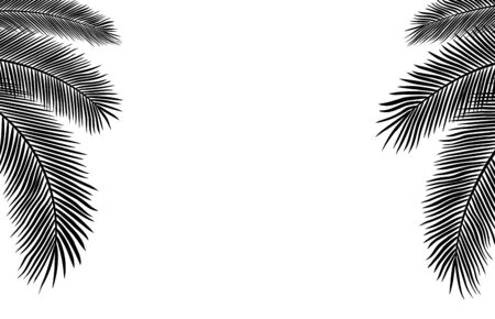 Copyspace Template with Palm Leaves Silhouettes
