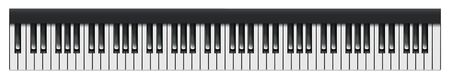 Set of 88 Piano or Synthesizer Keys, Keyboard of Musical Instrument