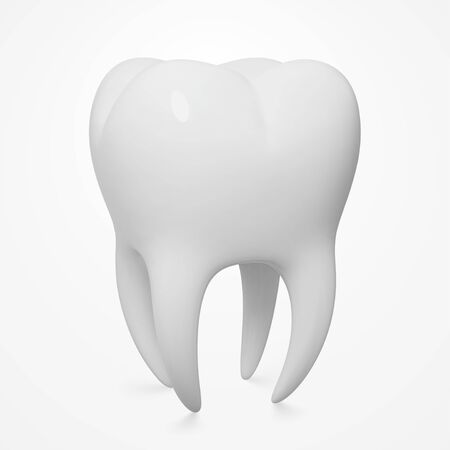 Realistic Vector Human Tooth, Close-Up, Three-Quarter Front Angle View Vectores