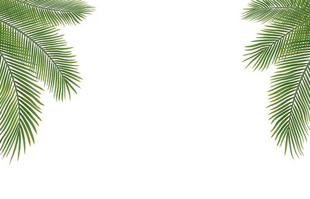 Copyspace Template with Palm Leaves