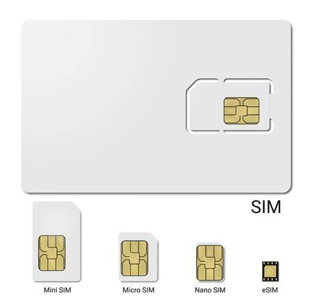 Sim Card Form Factor Evolution, Vector Realistic Illustration
