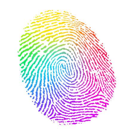 Vector Rainbow Multicolor Fingerprint on White Background