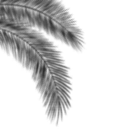 Palm Leaves Black Halftone Silhouettes Hanging at the Corner