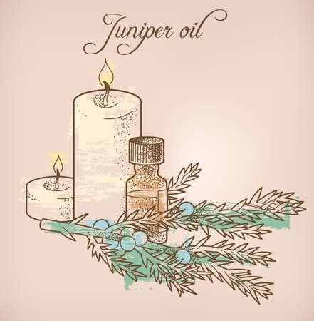 everlasting: Illustration of juniper essential oil and candles Illustration