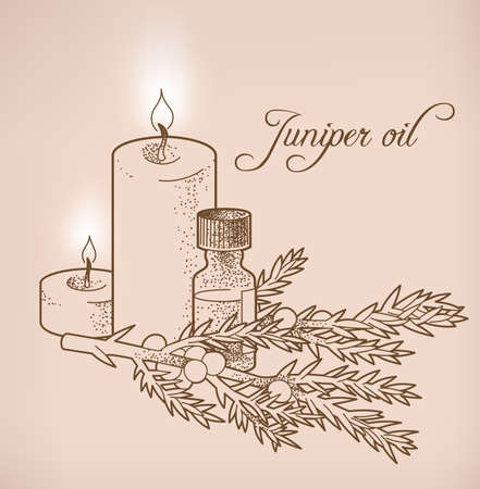 everlasting: Illustration of juniper essential oil and candles Illustration