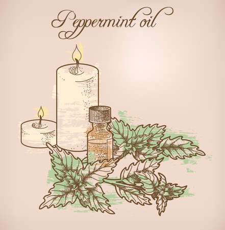 perfumed candle: Illustration of peppermint essential oil and candles Illustration