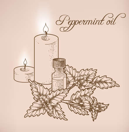 scented candle: Illustration of peppermint essential oil and candles Illustration