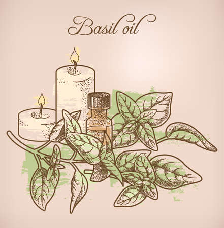 Illustration of basil essential oil and candles