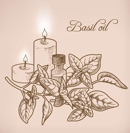 bodycare: Illustration of basil essential oil and candles