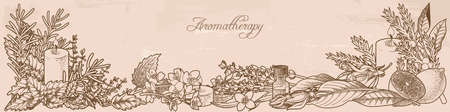 Composition made of aromatherapy herbs Stock Illustratie