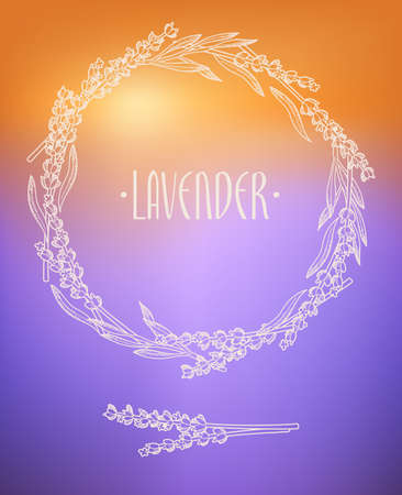 lavender: Lavender wreath on lavender field background Illustration