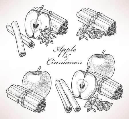 apple cinnamon: Set of apple and cinnamon hand drawn compositions