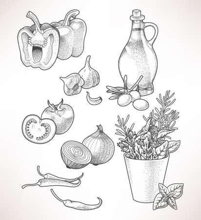 salatdressing: Illustration von Oliven�l, Gem�se und Kr�uter