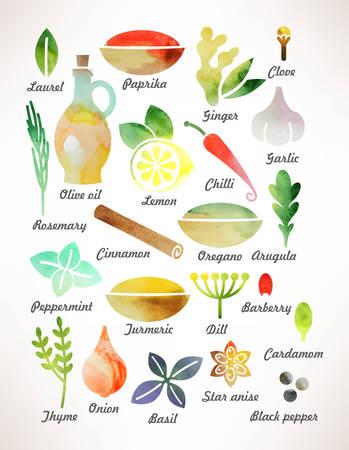 Set van verschillende kruiden en specerijen voor het koken