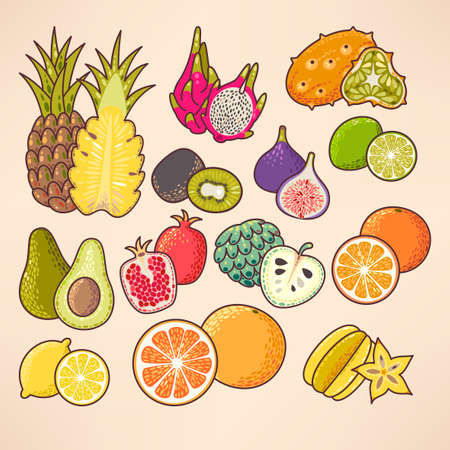 exotic fruits: Colorful exotic fruits and slices vector set