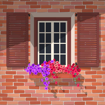 petunia: Illustration of open window with colorful petunia