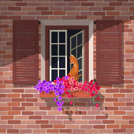 white window: Illustration of open window with colorful petunia and the cat