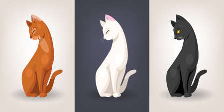 abyssinian: Vector set of three graceful cats sitting