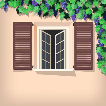 residency: Illustration of grape vine and window with shutters Illustration
