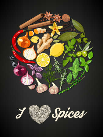 nutmeg: Illustration of circle of spices and herbs Illustration