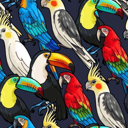 animales de la selva: Macaw del vector, tucán y fondo transparente cacatúa