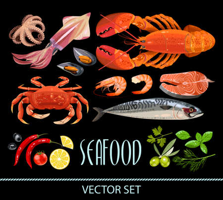 crab: High detailed fresh seafood and different spices vector set