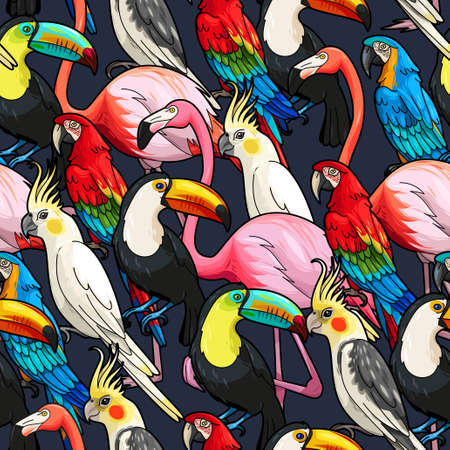 bird of paradise: Colorful exotic birds on dark background vector seamless pattern