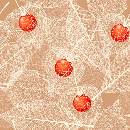 winter cherry: White skeleton winter cherry and leaves vector seamless background