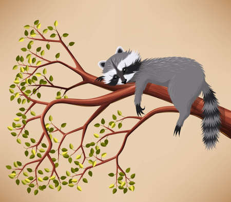 Illustration of cute raccoon taking a rest on the tree