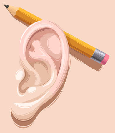from behind: Vector illustration of detailed pencil behind ear Illustration