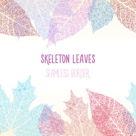 Colorful skeleton decorative leaves vector seamless border