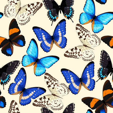 high detailed: High detailed colorful butterflies vector seamless background
