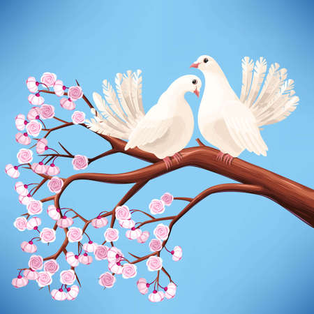 freedom couple: illustration of two white doves on the branch